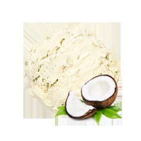 【DiiTO低脂手工冰淇淋】Coconut 椰子(130ml/ 杯) 低脂手工冰淇淋