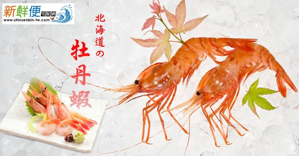 頂級牡丹蝦(300g / 5隻裝) 1