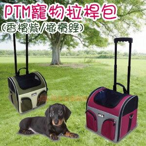 【恰恰】PTM寵物拉桿包