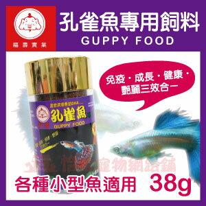 【恰恰】福壽 孔雀魚飼料38g
