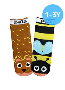 ★衛立兒生活館★美國Pals Socks 好夥伴寶寶襪-蜂蜜小熊(1-3Y)