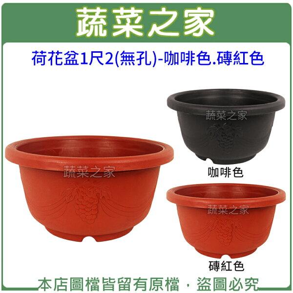 蔬菜之家:【蔬菜之家005-D124】荷花盆1尺2(無孔)-咖啡色.磚紅色