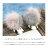 日本CREAM DOT  /  ピアス レディース シンプル ブランド 大きめ ミンクファー メタル 大人カジュアル 可愛い バイカラー グレー ベージュ カーキ ホワイト 秋冬  /  a03589  /  日本必買 日本樂天直送(1790) 2