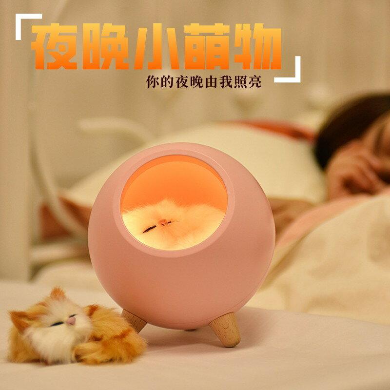 小萌寵小屋氛圍小夜燈led家用臥室床頭伴睡燈usb充電創意可愛寵物貓咪 0