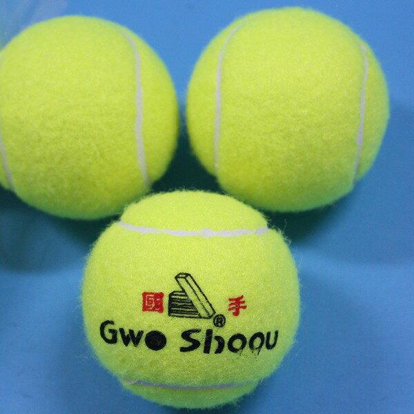 一般網球 國手硬式網球 硬式練習網球 壁球/一包12個入{定25}