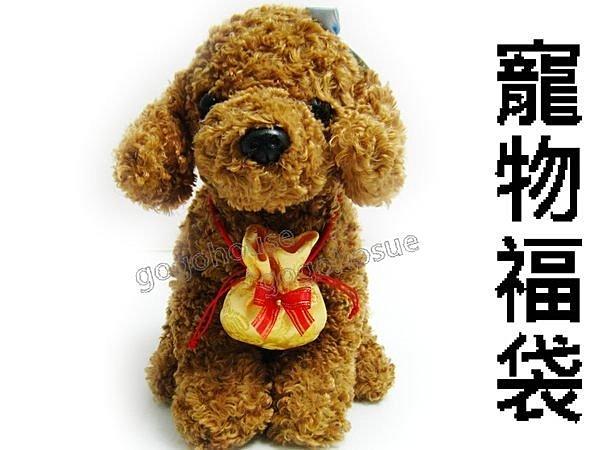 ☆狗狗之家☆寵物福袋/紅包袋~金黃色(紅貴賓、約克夏、柴犬適~全犬種皆適用)