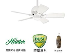 [top fan] Hunter Orbit #28420 36英吋吊扇附拉開關-白色 (適用於110V電壓)