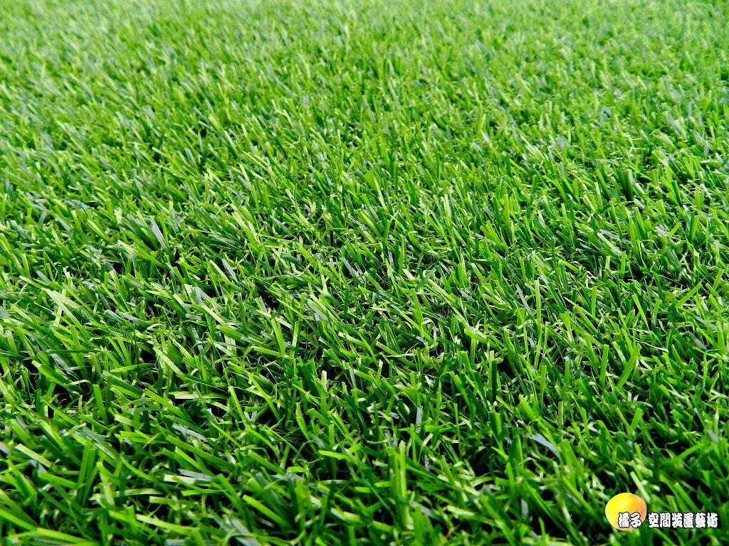 [橘子空間裝置藝術] 1*1M 人造韓國草坪.高爾夫草皮.大型綠地毯 ~破盤出清價~ ☆園藝.造景資材.庭園.櫥窗.花台.陽台佈置☆