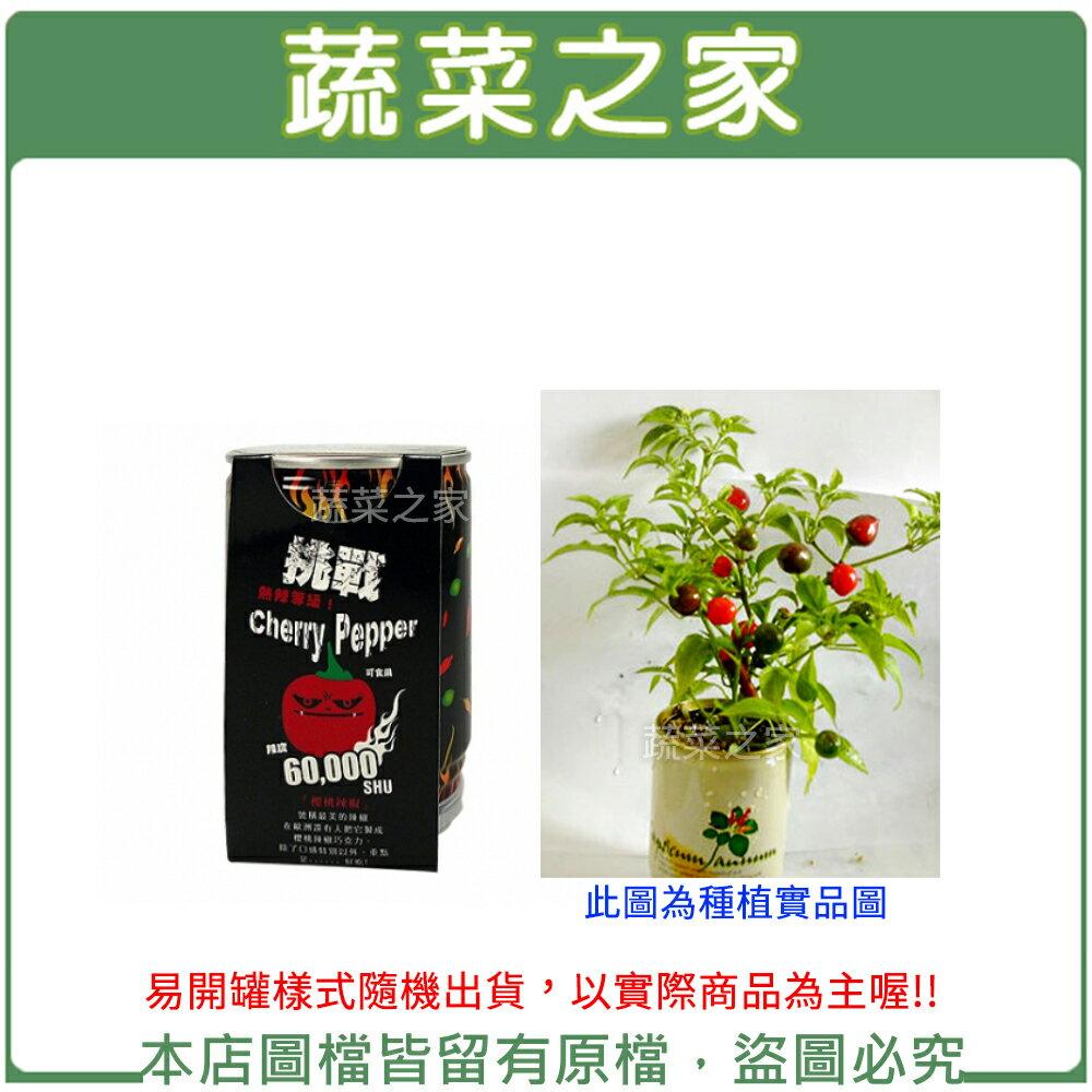 【蔬菜之家004-E17】iPlant易開罐花卉-櫻桃辣椒