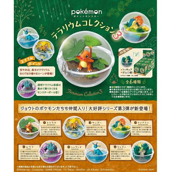 【日本正版】盒裝6款寶可夢精靈球P3盒玩擺飾水晶球第3彈神奇寶貝Re-Ment-204079