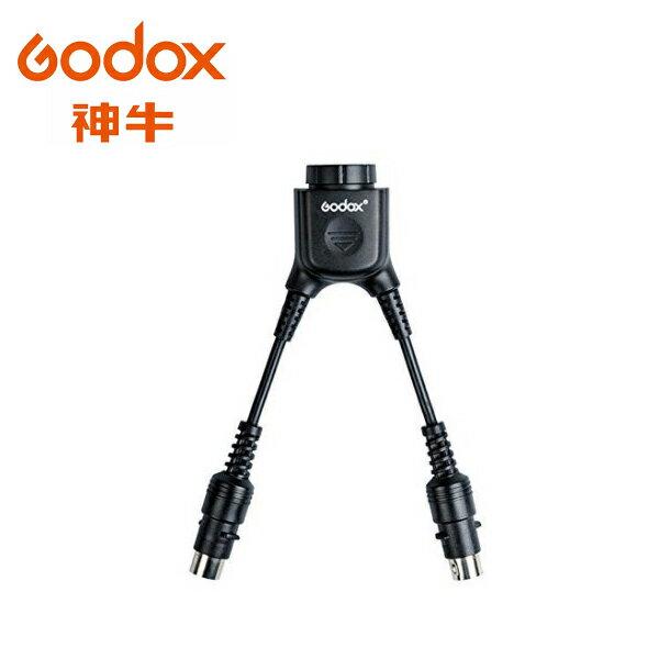◎相機專家◎ Godox 神牛 PB-DB-02 Y型PB電瓶轉換線 1燈2電瓶插座 PB960 AD360 公司貨