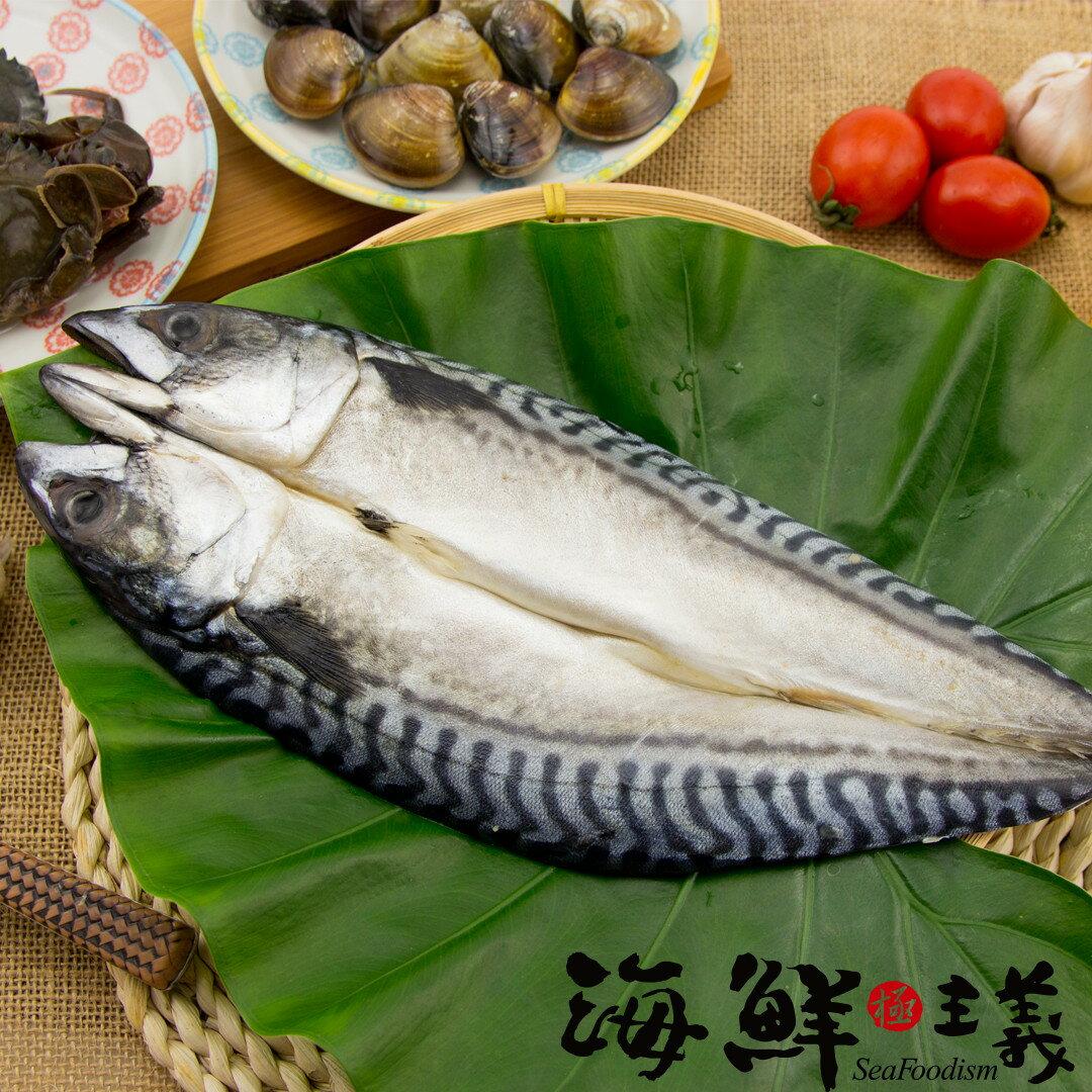 ~海鮮主義~薄鹽鯖魚一夜干  330g  尾  ~採用是~白腹鯖~,白腹鯖體較扁 ~體態飽