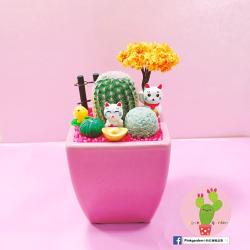 Pinkgarden小粉紅療癒盆栽 多肉植物 仙人掌 卡通盆栽 辦公室小物 療癒 禮物 招財貓 客製化  (客訂)