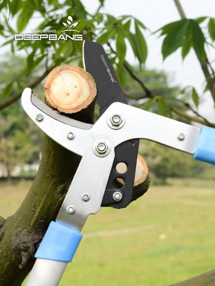進口粗枝剪高枝修枝剪樹枝果樹綠化花園藝剪刀伸縮大力剪園林工具