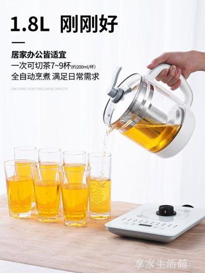 養生壺全自動加厚玻璃電煮茶壺迷你多功能花茶黑茶煮茶器熱燒水壺-220V-
