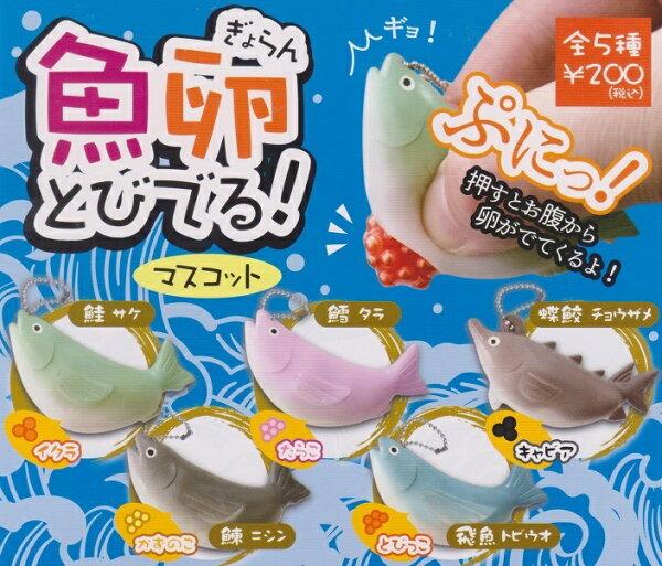 ◆時光殺手玩具館◆現貨@療癒小物@轉蛋扭蛋捏捏魚卵造型一套5款
