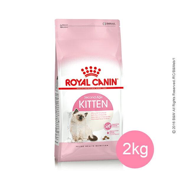 ROYAL 法國皇家 幼母貓K36 2 kg
