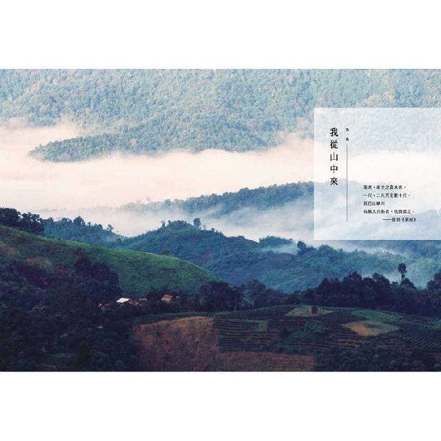普洱茶錄─易武的茶香歲月 2