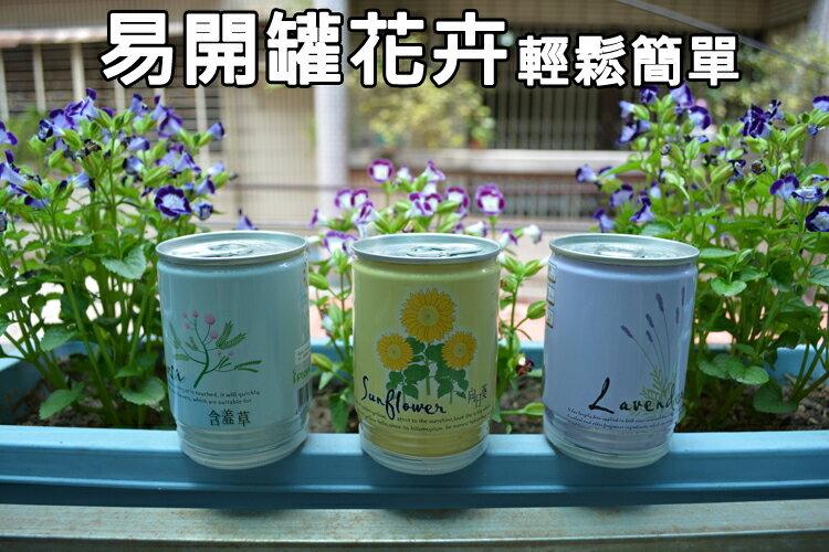 輕鬆簡單 易開罐花卉 易開罐植物 景栽 罐頭植物 桌上植物 療癒系 減壓 快樂農場 DIY