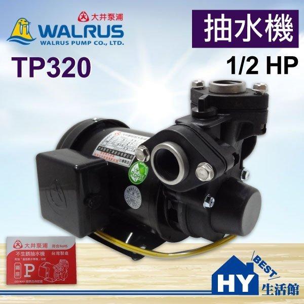 大井泵浦 TP320 家用抽水機。1/2HP 不生銹 塑鋼抽水機 抽水泵浦 鐵座 附加「溫控無水停機」功能