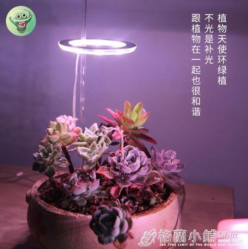 植物補光燈全光譜led仿太陽燈上色室內家用usb食蟲植物多肉補光燈