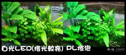 [第一佳 水族寵物] 台灣雅柏UP LED燈具 全白燈 [ 蛇管(夾燈)-17cm]
