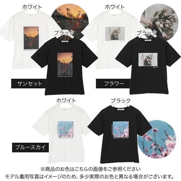 日本Kobe lettuce /  個性印花棉質短袖上衣 T恤  / -c3877-日本必買 日本樂天直送(1990) 1