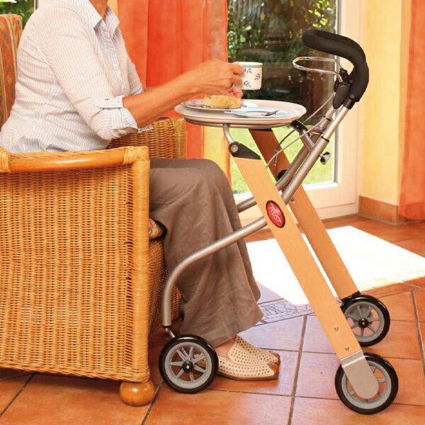【福利品】瑞典北歐風設計Let's Go室內型步行推車★含一專用餐盤★ 3