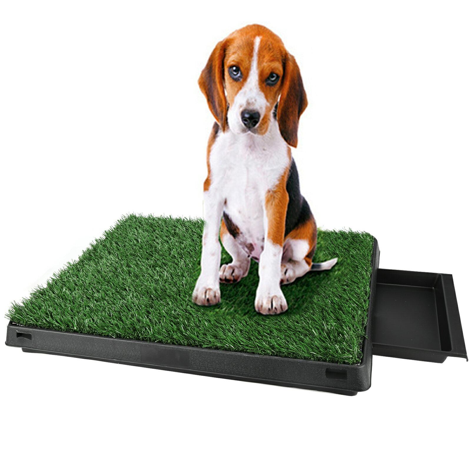 Pet Park Indoor Potty Dog Grass Mat Training Pad Pet Potty 0