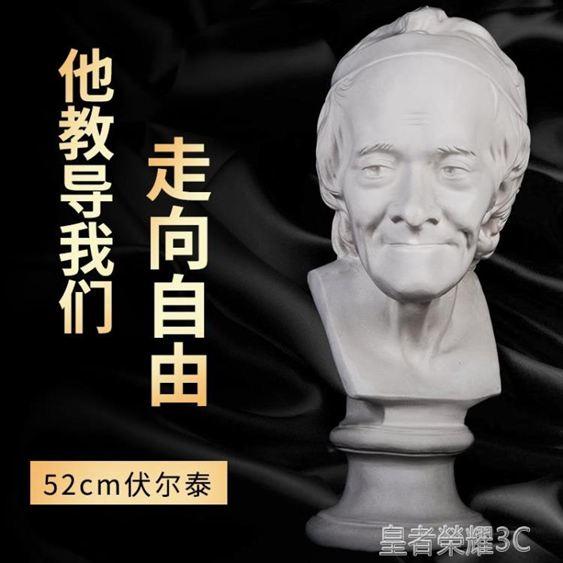 雕像伏爾泰石膏像頭像美術素描教具靜物人物人像胸像雕塑擺件模型雕像