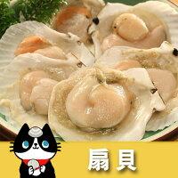 海鮮火鍋料推薦到扇貝(約500g/包)就在優食網推薦海鮮火鍋料