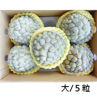 【樂活網嚴選】產地直送台東正宗大目釋迦 五斤精緻禮盒(大/5粒裝)