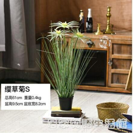 仿真植物盆栽蒲葦草蒲公英裝飾擺件室內客廳櫥窗陳列大型蘆葦盆景 居家物語