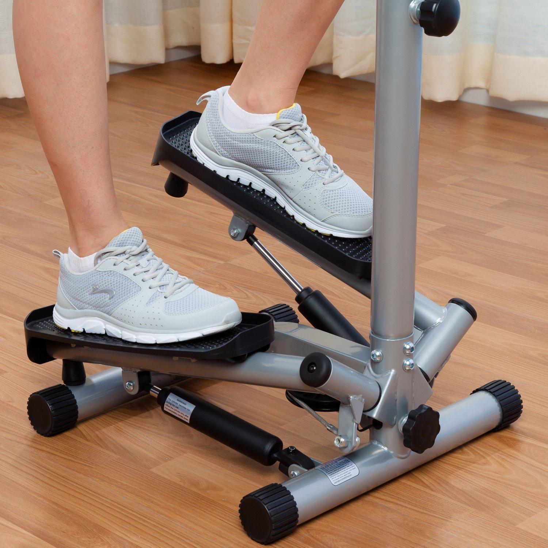 7ee8475bfad Sunny Health & Fitness NO. 059 Twist Stepper Step Machine w/ Handle Bar and