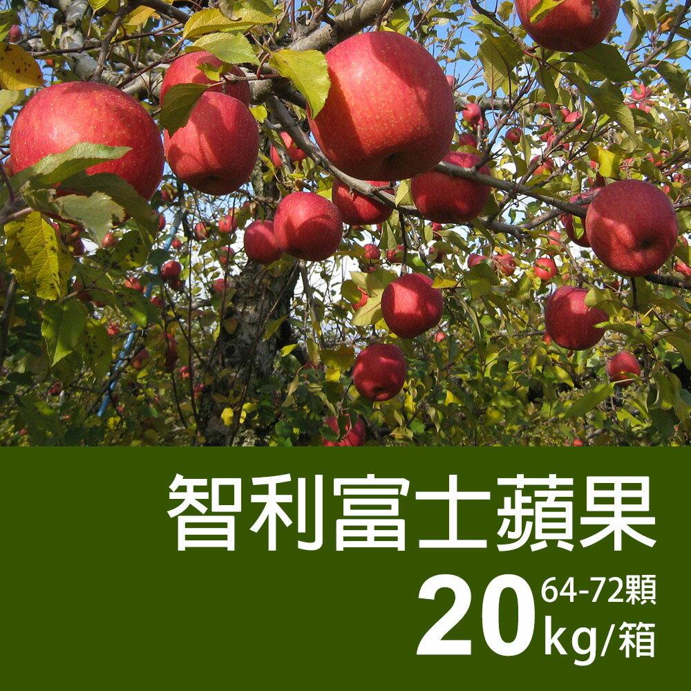 【築地一番鮮】智利富士蘋果20kg(64-72顆 / 箱)▶全館滿499免運 - 限時優惠好康折扣