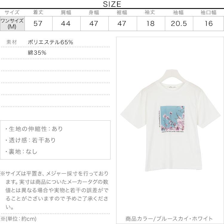 日本Kobe lettuce /  個性印花棉質短袖上衣 T恤  / -c3877-日本必買 日本樂天直送(1990) 3