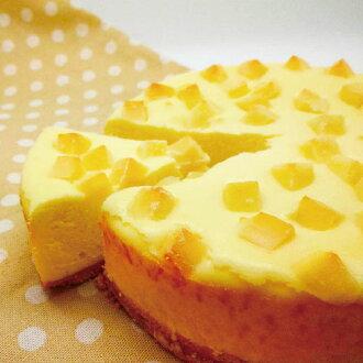 光芒手作烘焙坊【超濃厚乳酪登場】Double雙倍乳酪丁起司蛋糕 6吋
