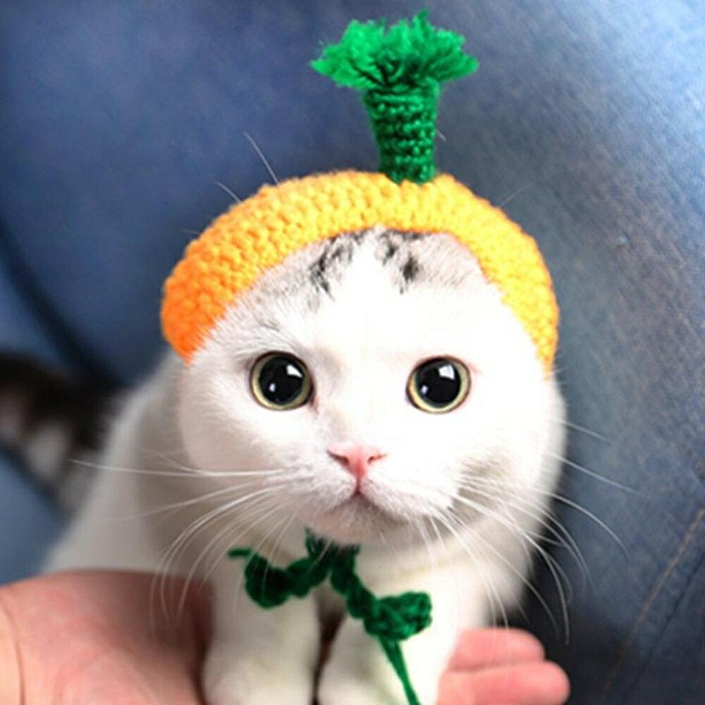 貓咪帽子寵物貓頭套可愛狗狗帽子貓貓新年帽貓咪頭飾裝扮圍巾圍脖 名購居家