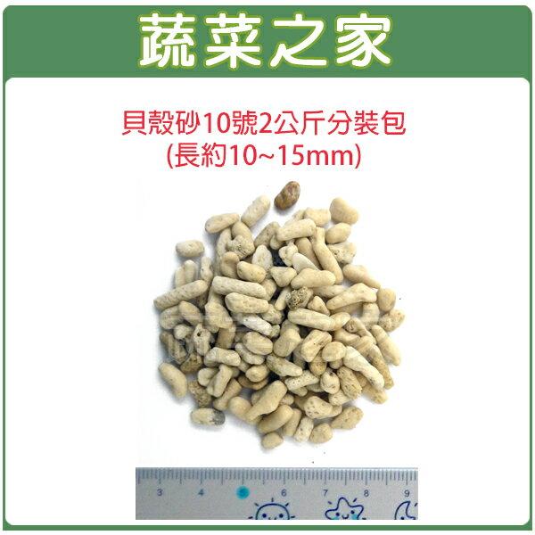 【蔬菜之家001-AA25】貝殼砂10號2公斤分裝包(長約10~15mm珊瑚石.米貝石.貝殼石)