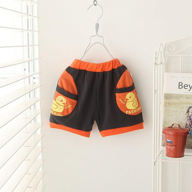 2017年新款夏裝夏季 男童 短褲 特價 鴨子兒童短褲 便宜