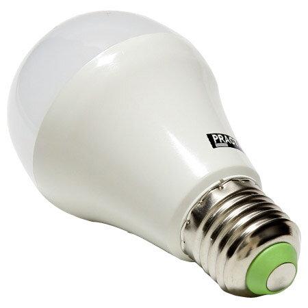LED燈泡8W 白光 PT-LE5WL