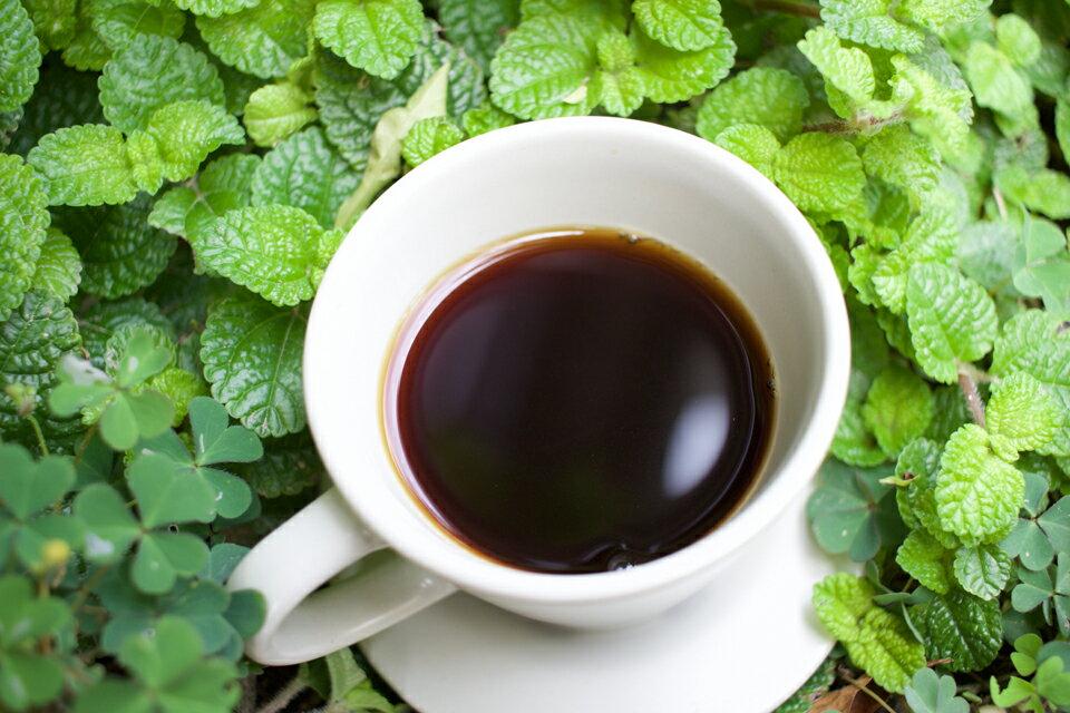 【木時咖啡】巴西 南米納斯 聖塔露西亞莊園 黃波旁 去果皮日曬 /半磅/咖啡豆