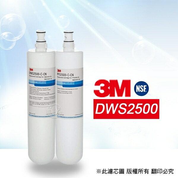 【水蘋果快速到貨】3M DWS2500 替換 濾心 組合 (2支組)