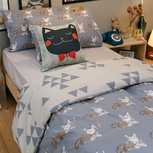 Iron cat 鐵灰小貓~床包駝色素色~單人 雙人 組 舒適磨毛布