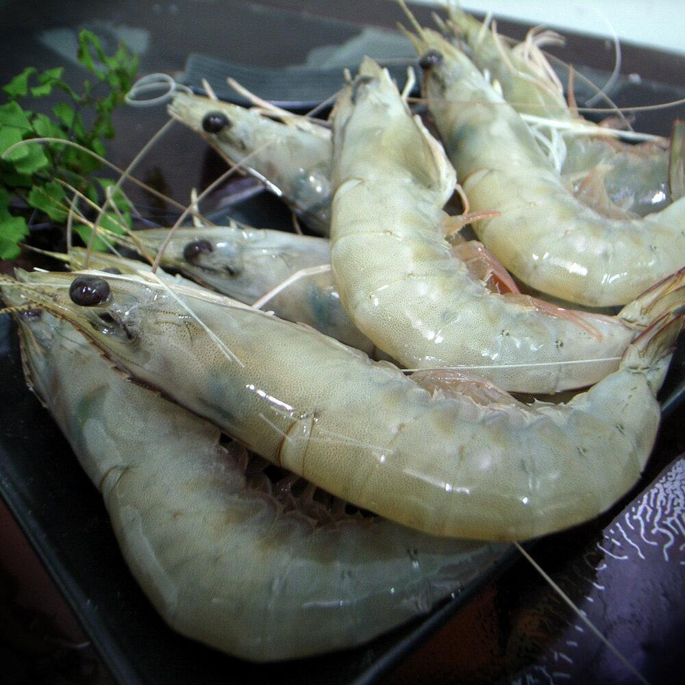 【築地一番鮮】頂級藍鑽蝦1包(500g±10%/包)-任選