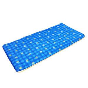 台灣製造 單人椰子床墊3X6尺(三折床墊)學生床墊寶寶爬行墊.墊子睡墊加床墊遊戲墊.冬夏兩面床墊.推薦哪裡買 P023-05