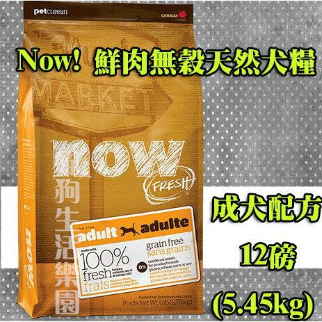 Now! 鮮肉無穀天然糧 成犬配方 12磅(5.45kg)