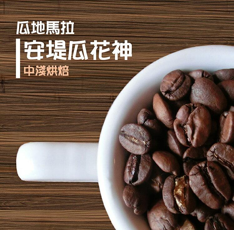 新鮮烘焙咖啡豆-瓜地馬拉安堤瓜花神 精品咖啡