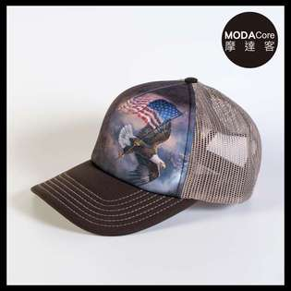 【摩達客】(預購)美國進口TheMountain愛國鷹掌旗藝術棒球帽網帽5-Panel新五分割帽