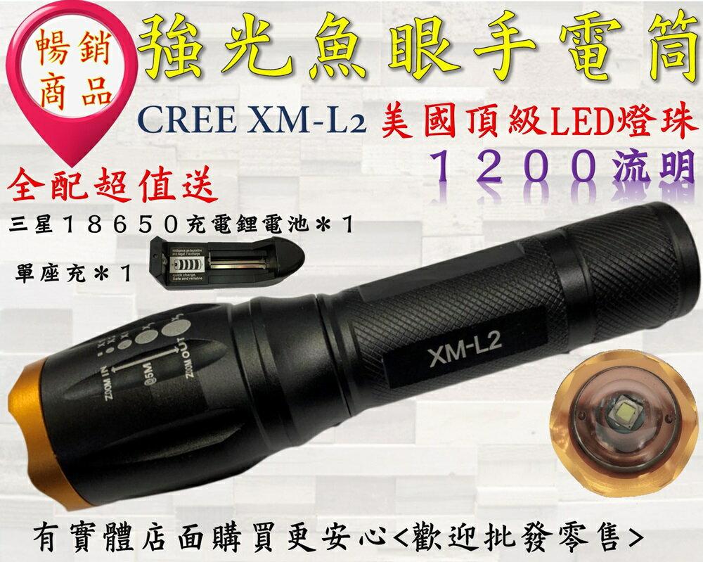 興雲網購【27045】CREE XM-L2強光魚眼手電筒 頭燈 釣魚燈(整套含座充+充電鋰電池)